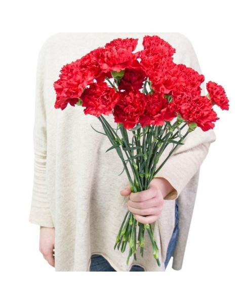 Цветы на заказ из гвоздик цветы где купить подешевле